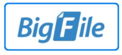 BigFile logo